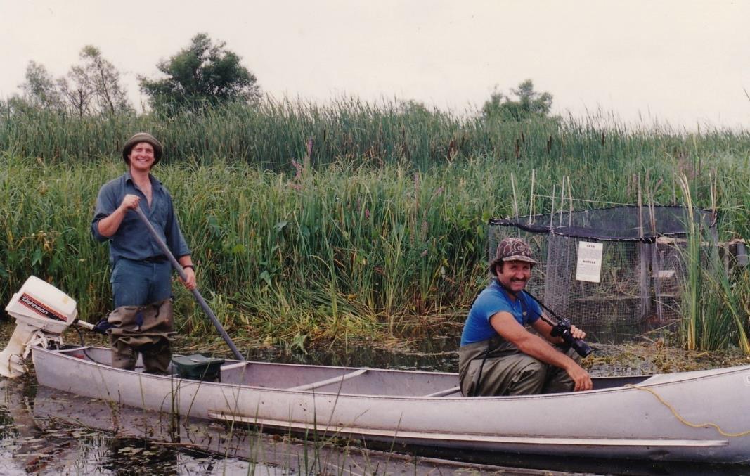Paul Messier et Robert Angers effectuant les premières opérations de baguage à l'été 1990.